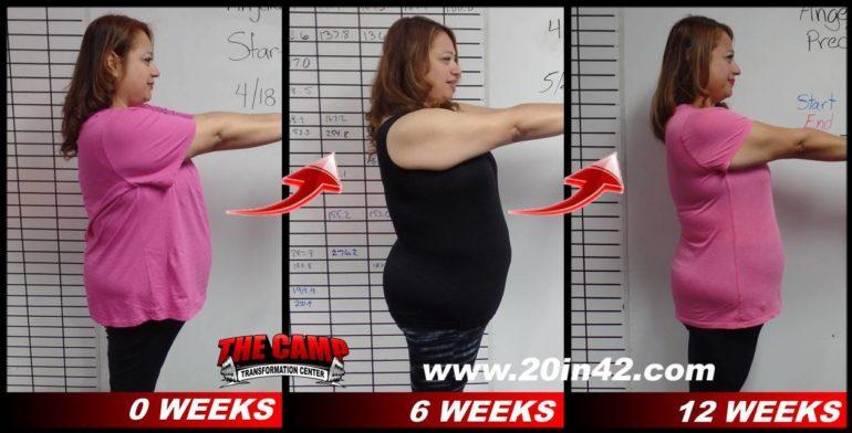 12weeks2